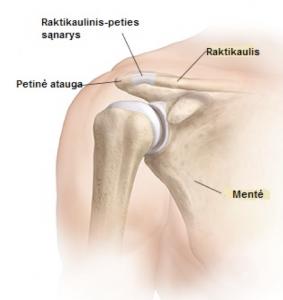 stiprus skausmas pirštų sąnarių sraigtiniai sujungimai pečių