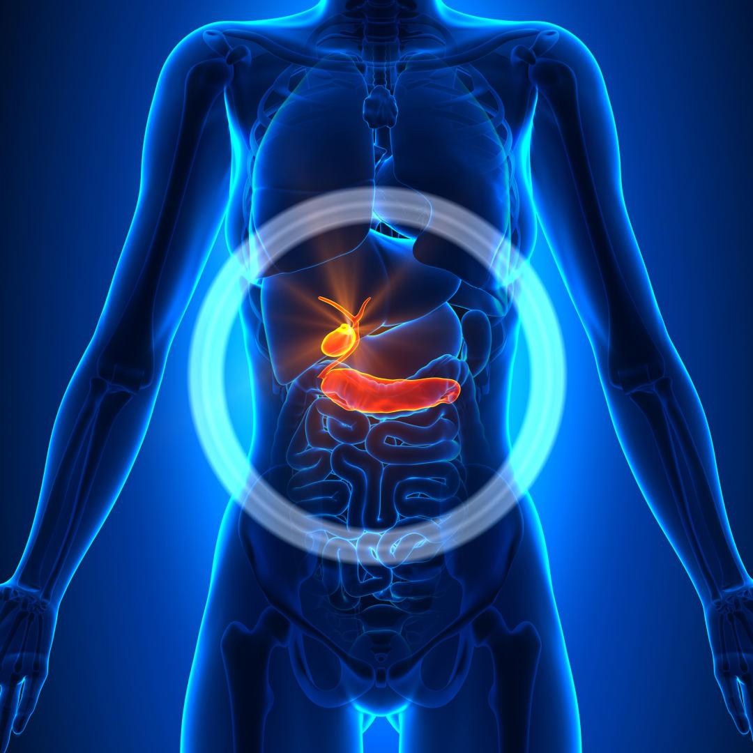 chondroitino gliukozaminas tab 40 elite ūkio įrankiai nuo skausmo sąnariuose