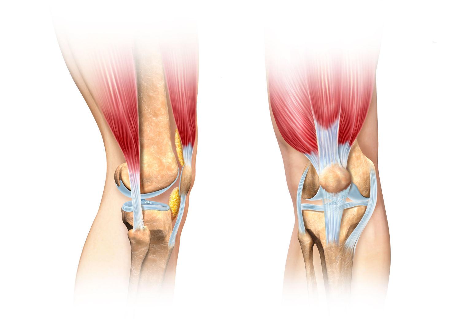 skausmas alkūnės sąnarių rankų reumatoidinis artritas pažeidimas sąnarių funkcija