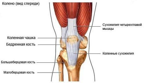 osteochondrozė iš alkūnės sąnario žmogus gydymas artrozės sąnarių sustabdyti 2 laipsnių