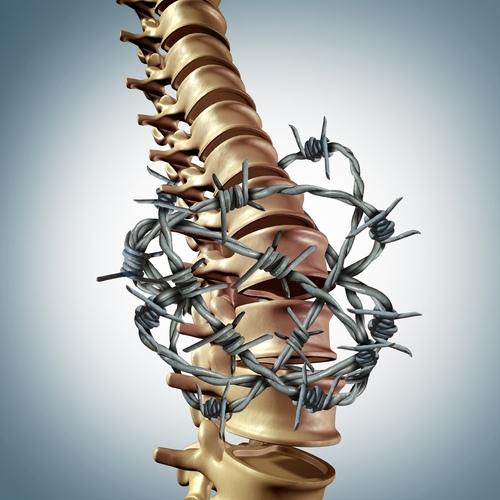 gydymo iš fitoterapijos sąnarių