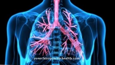 uždelstas gliukozamino chondroitino kaulų skausmas iš alkūnės sąnario