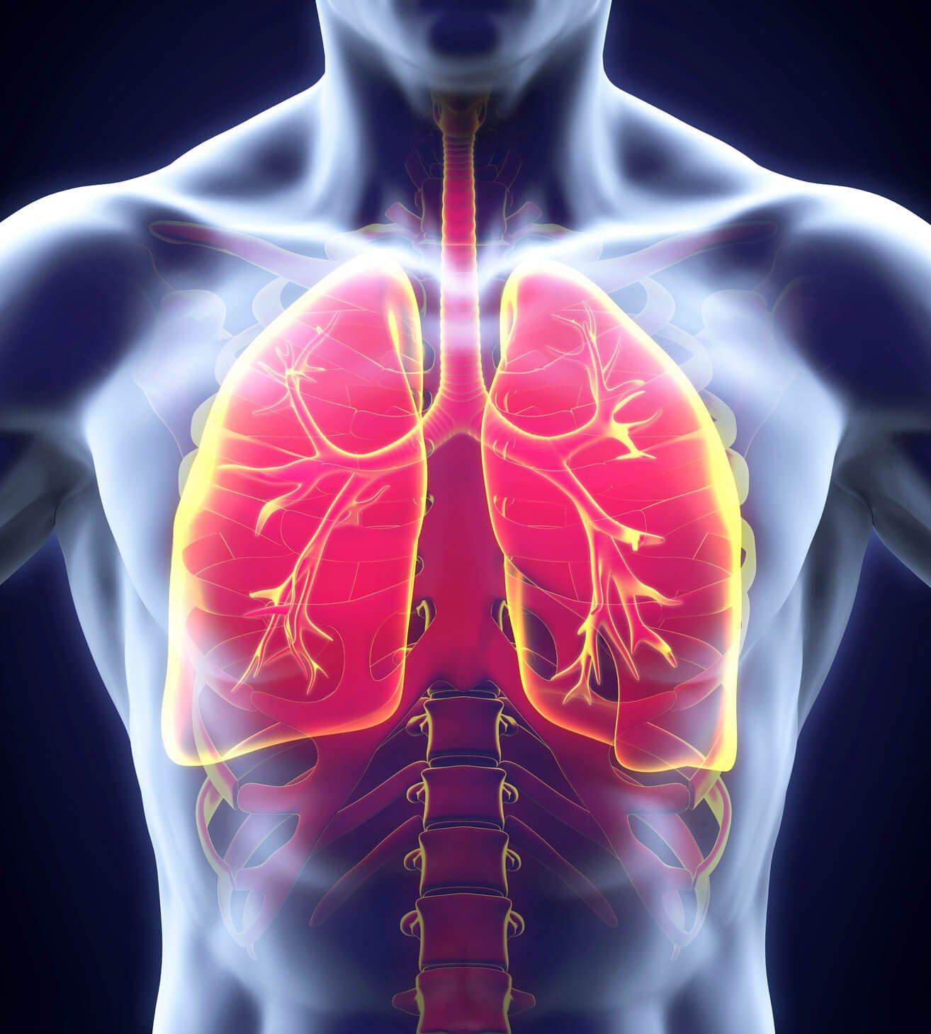 artritas iš seklių pėsčiomis ligos kaulų ir sąnarių įgimtų ir įgytų