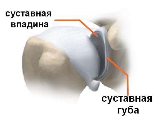 žolės osteoartrito artrito gydymui tepalas sąnarių smart tepalas