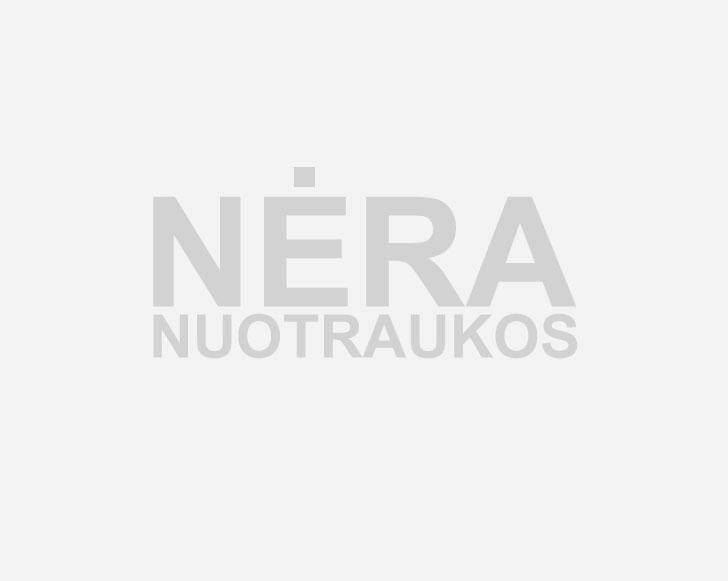 sekmadienis sąnarių žandikauliai dėl teisės