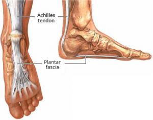skauda ir sutrinkite kaulai ir sąnariai nervų skausmai sąnariuose