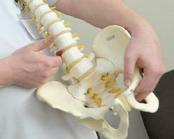 dubens sanario skausmas pradedantysis artrozė peties sąnario