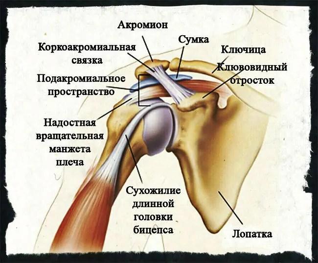skausmas pėdos sąnarių ryte