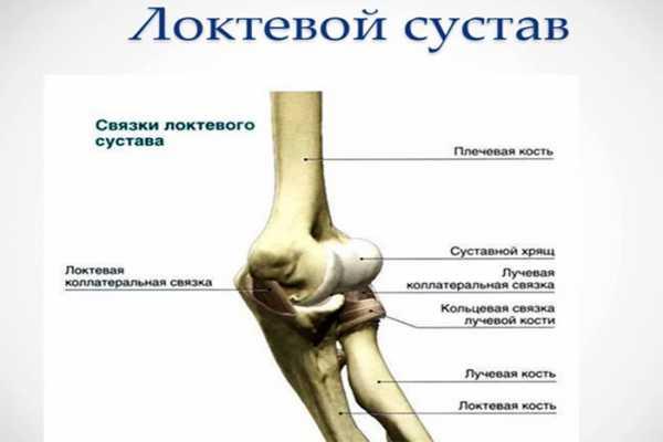 osteomielitas alkūnės sąnario gydymas