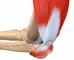 skausmas iš piršto sąnario ant rankos gydymas