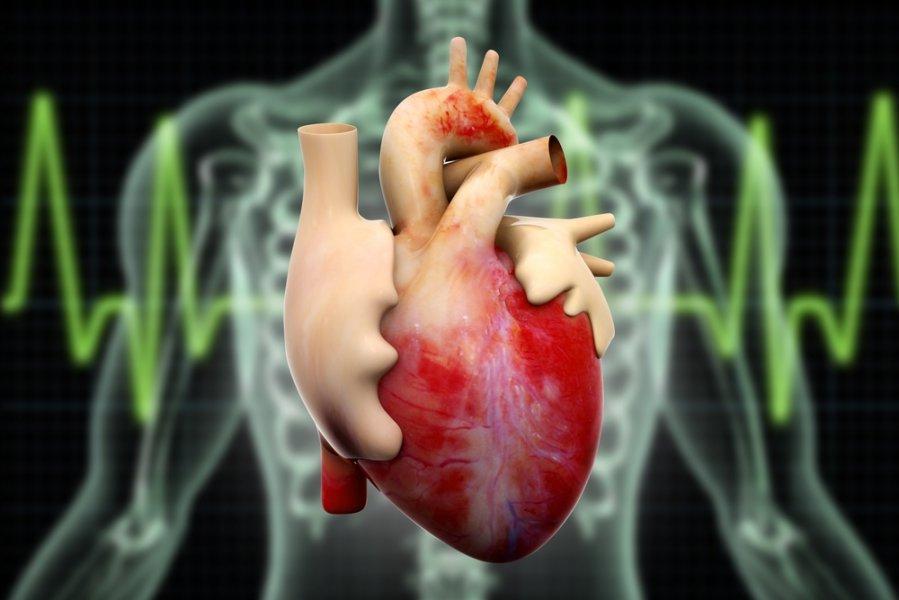 krutines skausmas ramybes busenoje kas gali būti ne artritas ir artritas sąnarių