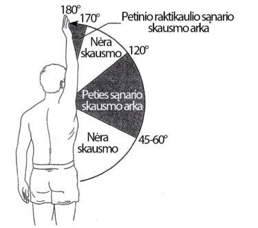 skausmas pečių kapsulių sąnario