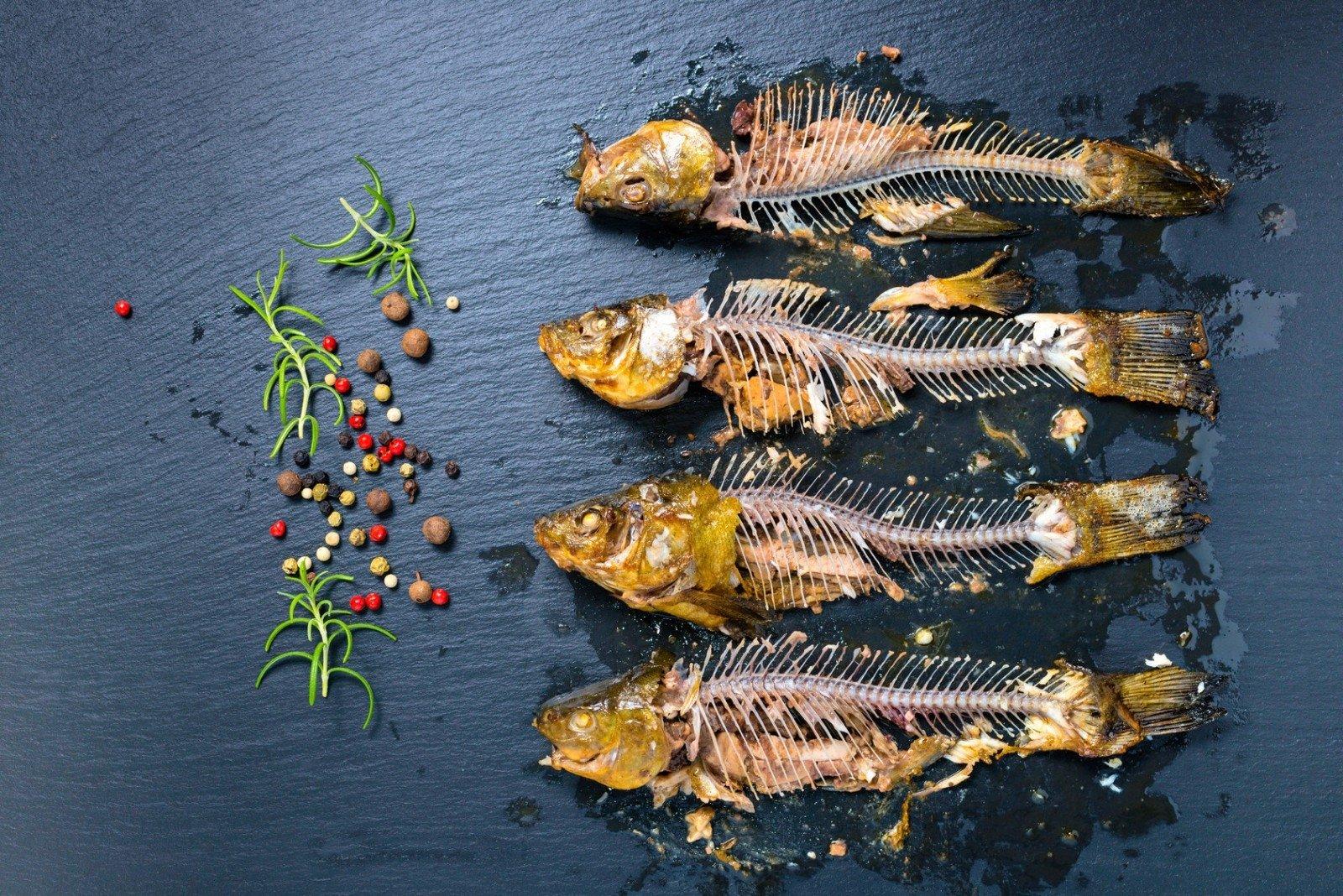 žuvų ligų kaulų ir sąnarių aterosklerozė sąnarių gydymo